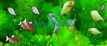 3D Pacu Fish Free Screensaver 1.0.0